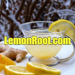 lemonrootlogo