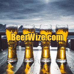 Domain Name Beerwize.com