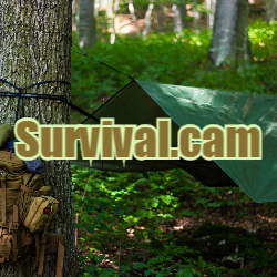 Domain Name Survival.cam is for Sale