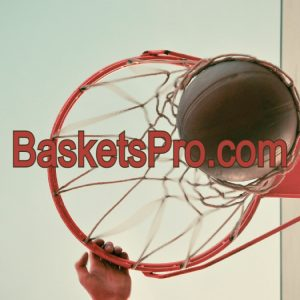 BasketsPro.com is for Sale