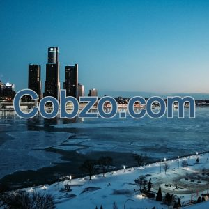Domain Name Cobzo.com
